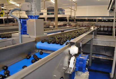 It's the only cherry sorting machine in the market that really delicately handles your cherries