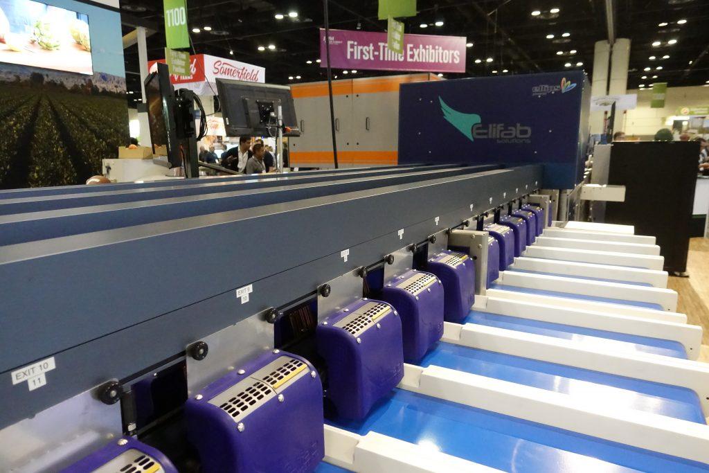 new blueberry sorting machine